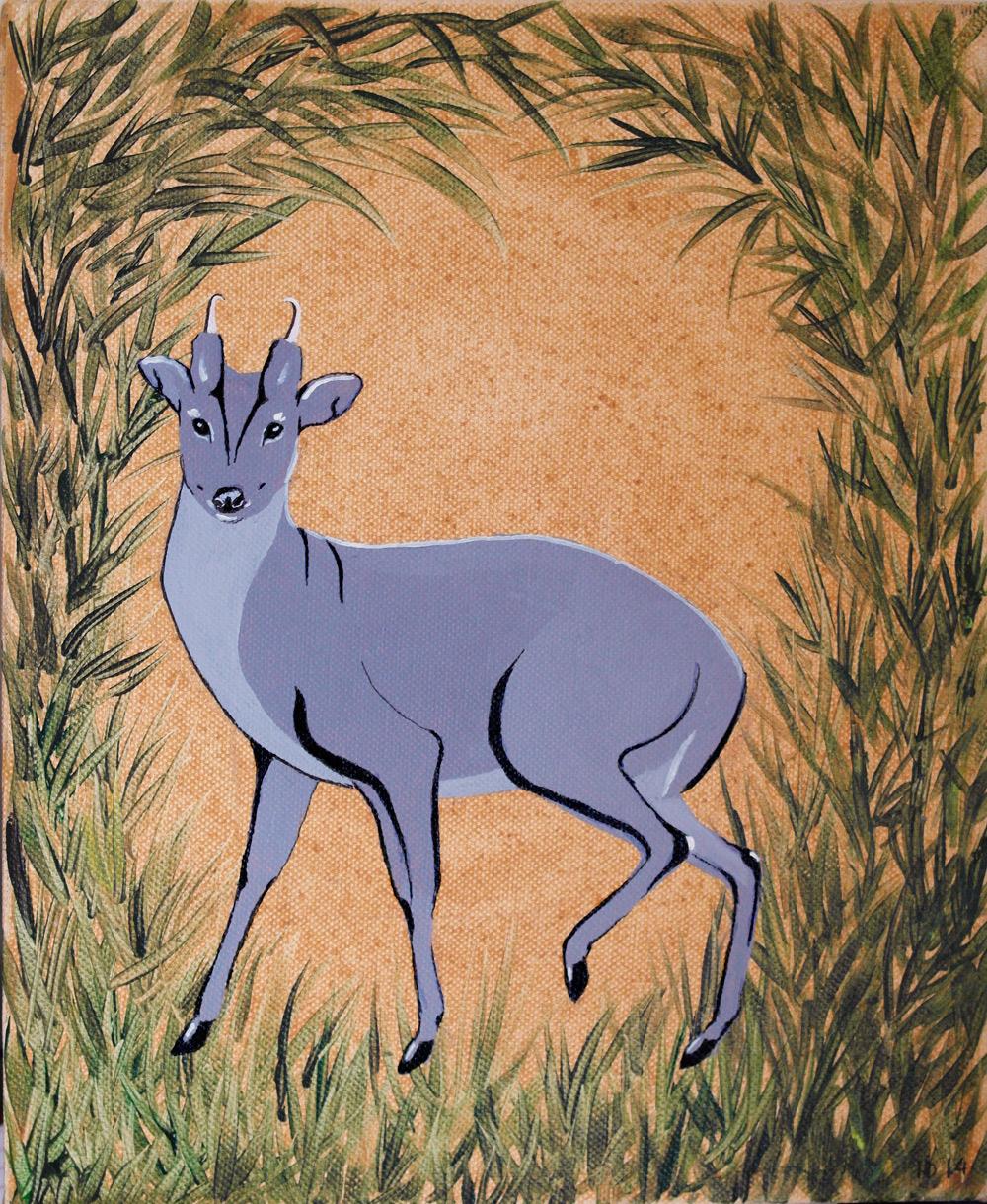 PP's Muntjac deer