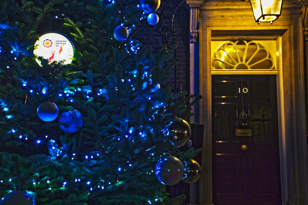 IYL2015 Downing Street deer
